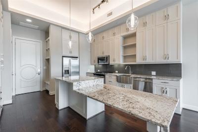 Harris County Rental For Rent: 2311 Mid Lane #1506