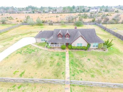 Dickenson, Dickinson Single Family Home For Sale: 3190 Mary Lane