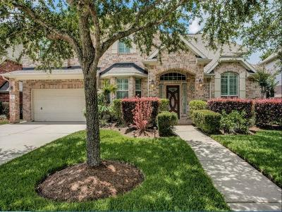League City Single Family Home For Sale: 525 Ivory Stone Lane