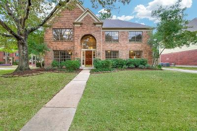 Houston Single Family Home For Sale: 17203 Mesa Springs Court