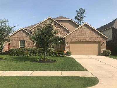 Porter Single Family Home For Sale: 22706 Soaring Woods Lane