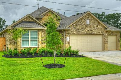 Tomball Single Family Home For Sale: 12711 Sherborne Castle