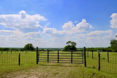 Navasota Farm & Ranch For Sale: 326 Ac County Road 446