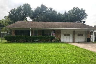 Single Family Home For Sale: 2205 Bruce Drive