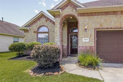 Porter Single Family Home For Sale: 21658 Horseshoe Drive Drive