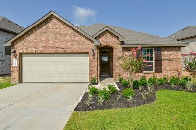 Katy Single Family Home For Sale: 3026 Francisco Bay Place