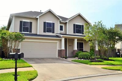 Tomball Single Family Home For Sale: 19227 Mossy Pointe Lane