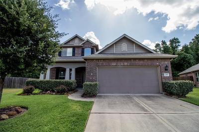 Porter Single Family Home For Sale: 24101 Burks Trail Drive
