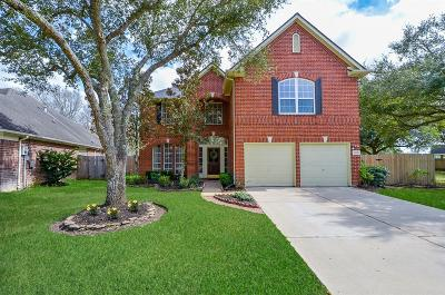 Sugar Land Single Family Home For Sale: 819 Fairpark Lane