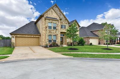 League City Single Family Home For Sale: 2244 Oakleaf Trail Lane