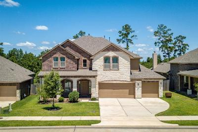 Conroe Single Family Home For Sale: 12227 Emerald Mist Lane
