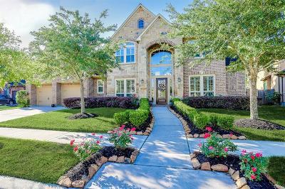 Missouri City Single Family Home For Sale: 7114 Angel Falls