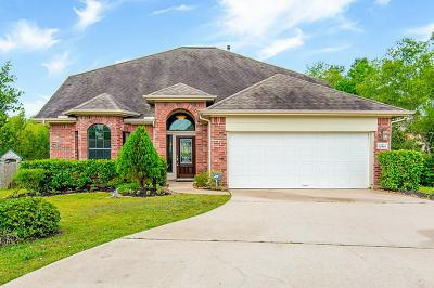 Willis Single Family Home For Sale: 12501 Canyon Court