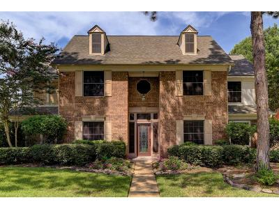 Houston Single Family Home For Sale: 2519 Fairwind Drive