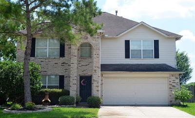 Pearland Single Family Home For Sale: 5402 McKinley Court