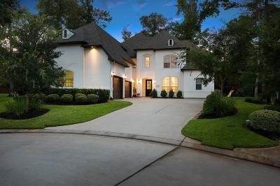 Tomball Single Family Home For Sale: 47 Red Moon Place #V