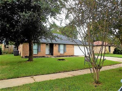 Spring Single Family Home For Sale: 24111 Spring Towne Drive