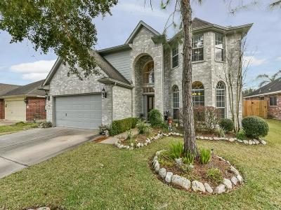 Pearland Single Family Home For Sale: 3525 Pine Valley Drive