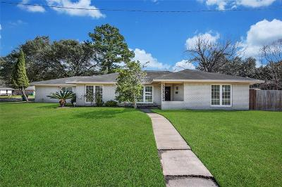 Alvin Single Family Home For Sale: 901 Terrace Drive