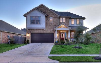 Rosharon Single Family Home For Sale: 4719 Harbor Sham Street