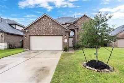 Rosenberg Single Family Home For Sale: 9714 Dry Creek Court
