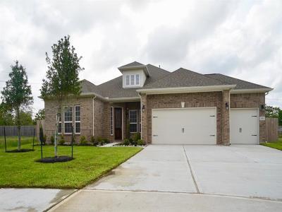 Rosharon Single Family Home For Sale: 2703 Topaz Cove Lane