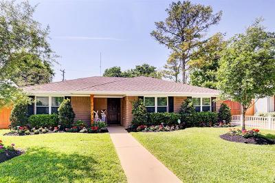 Houston Single Family Home For Sale: 10063 Larston Street