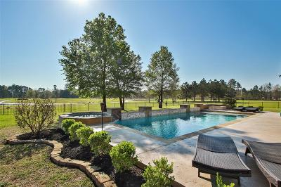 Conroe Single Family Home For Sale: 2713 Silverstone Way