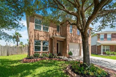 Tomball Single Family Home For Sale: 19123 Edens Dawn Drive