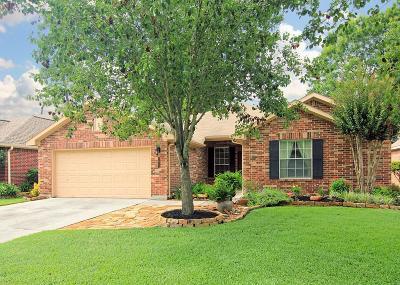 Kingwood Single Family Home For Sale: 1611 Stoney Park Drive