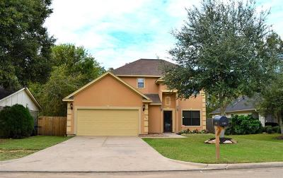 Dickinson Single Family Home For Sale: 3925 Easy Street