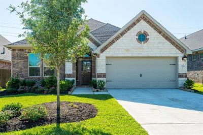 Fort Bend County Single Family Home For Sale: 2214 Falcon Brook Drive