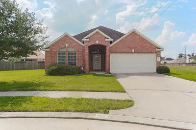 Tomball Single Family Home For Sale: 9711 Gold Rush Springs Drive