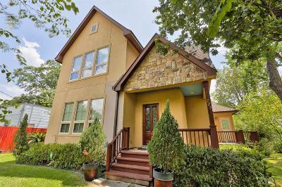 Houston Single Family Home For Sale: 725 Martin