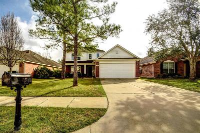 Cypress Single Family Home For Sale: 15410 Court Amber Trail
