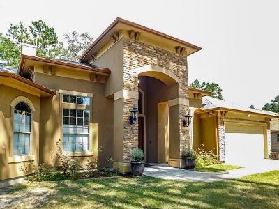 Porter Single Family Home For Sale: 22929 Brazos