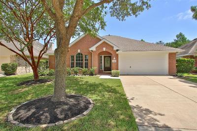 Katy Single Family Home For Sale: 20510 Indian Grove Lane