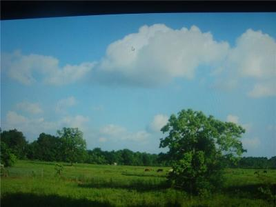 Residential Lots & Land For Sale: 950 S Fm 160 Mlk Road S