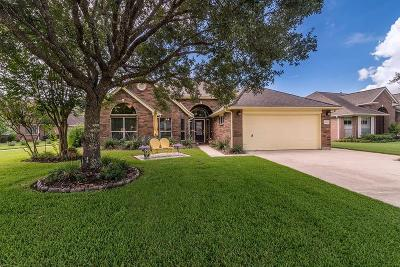 Pearland Single Family Home For Sale: 3714 E Peach Hollow Circle