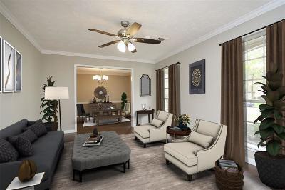 Houston Single Family Home For Sale: 3018 Pheasant Run Drive