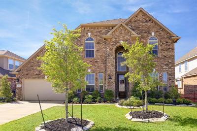 Rosenberg Single Family Home For Sale: 7414 Dry Stone Lane