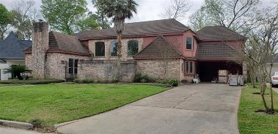 Houston Single Family Home For Sale: 1103 Ivy Wall Drive