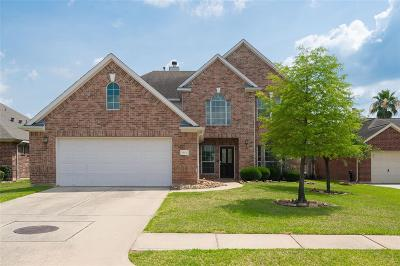 Tomball Single Family Home For Sale: 18106 Memorial Falls Drive