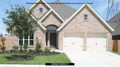 Pearland Single Family Home For Sale: 3107 Primrose Canyon Lane