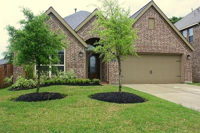 Montgomery Single Family Home For Sale: 185 Pinnacle Ridge Drive