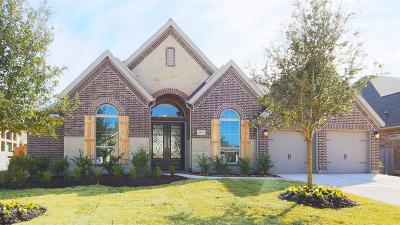 Friendswood Single Family Home For Sale: 1517 Royal Field Lane