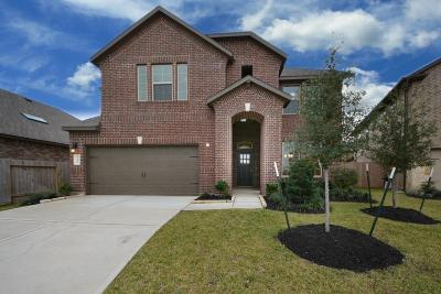 Katy Single Family Home For Sale: 3610 Daintree Park Drive