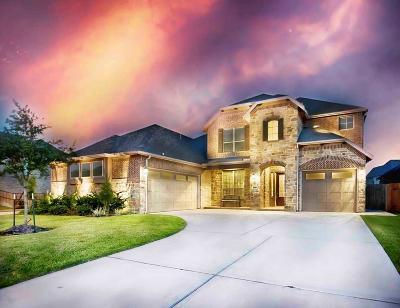 Katy Single Family Home For Sale: 28103 Middlewater View Lane