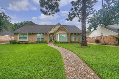 Houston Single Family Home For Sale: 2923 Riata Lane