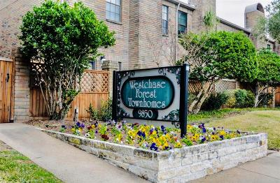 Houston Condo/Townhouse For Sale: 9850 Pagewood Lane #304